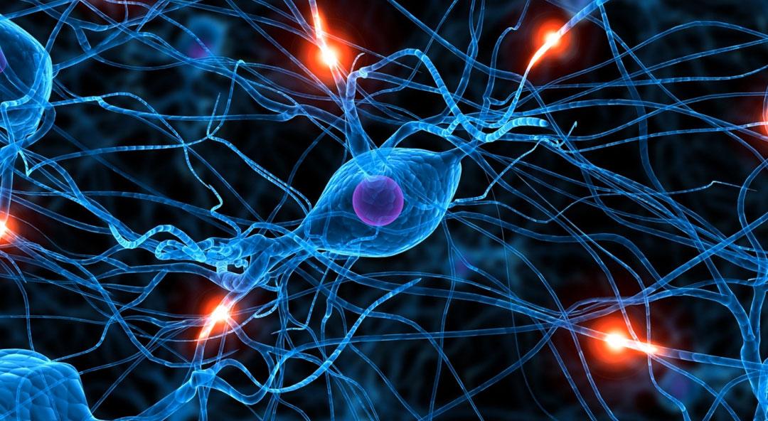 La méditation validée par les neurosciences